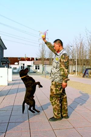 揭北京消防:飞崖走壁穿梭山林间 特别能战斗