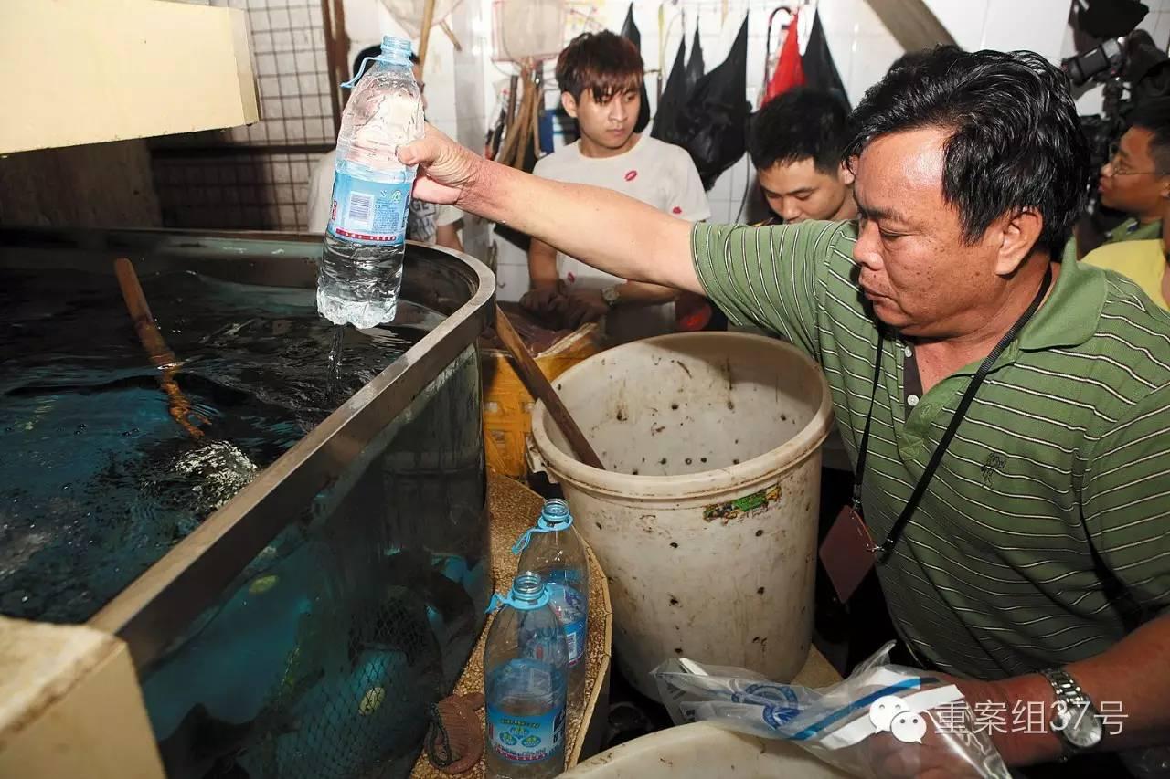 ▲2014年9月3日清晨六点半,广东深圳,布吉水产品交易市场,执法人员对鱼池的水进行取样。 图/视觉中国