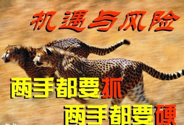 永利集团最新网站 4