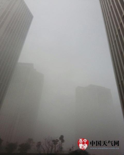 重庆大雾多地能见度不足百米 未来三天仍有雾