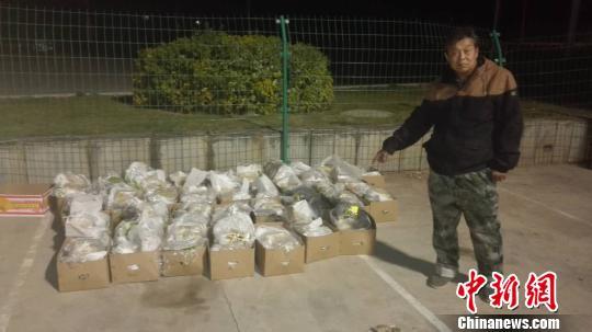 图为共查获冰毒片剂82.69千克。 警方供图