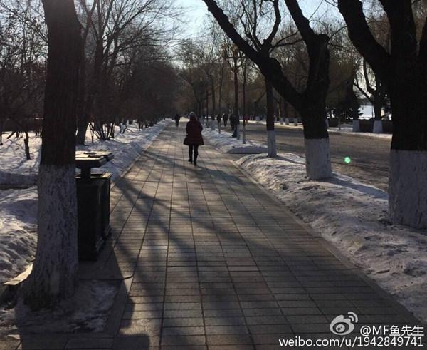 今天,哈尔滨十分寒冷。图片来源@微博网友