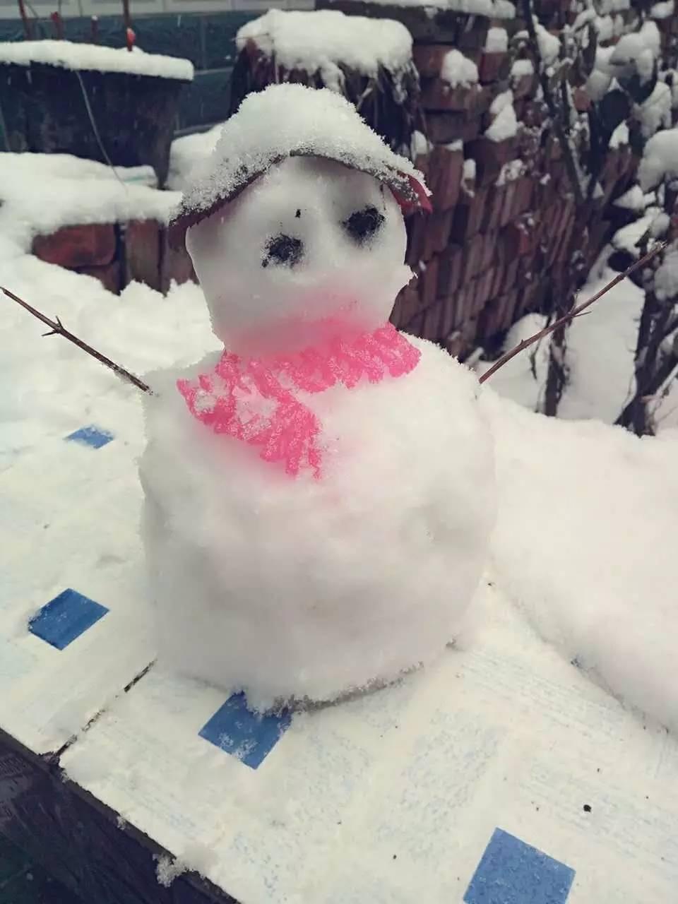 雪中情,唯有与你同行|雪地|雪中情|小脚印_新浪育儿