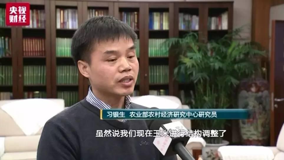 【智农生物-发酵饲料】玉米生产收储结构性调整