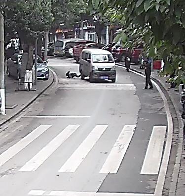 男孩被擦挂倒地后机智地滚到路边监控截图