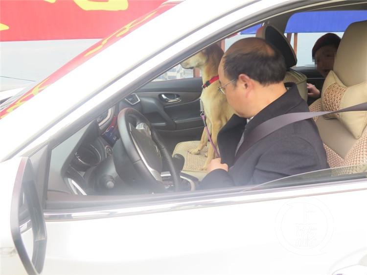 北京赛车pk10稳赢教程