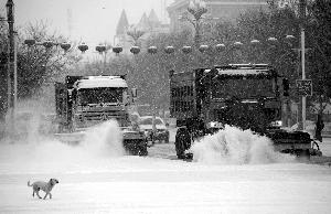 2月19日,在新疆阿勒泰地区布尔津县城,清雪车在清扫路面积雪。新华社发