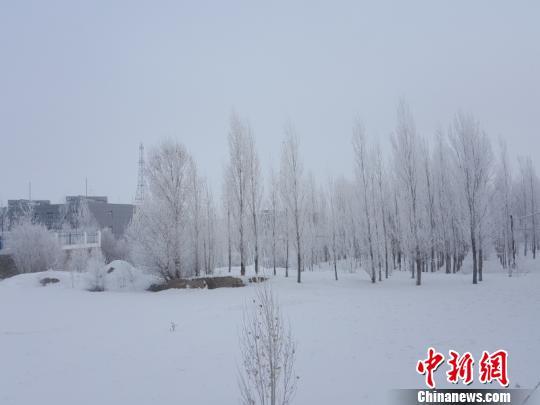 新疆阿勒泰出现大雾降温天气 局地最低气温降至-16℃