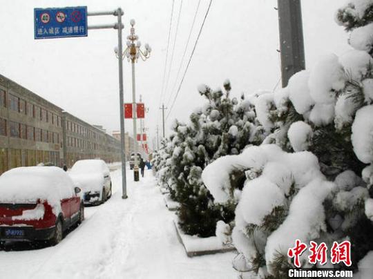 3月10日至13日,甘肃自西向东呈现客岁入冬以来最强横雪气象,乌鞘岭以东累计降水量广泛为10至35毫米,最年夜积雪深度达22厘米。图为位于甘肃甘南藏族自治州卓尼县城白雪笼罩的街道。 钟欣 摄