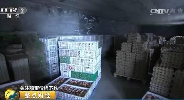 石家庄市鹿泉区会元养鸡厂负责人 谢振中:经销商四天来拉一趟,按部就班就是这样拉,年前因为行情不好都停了。