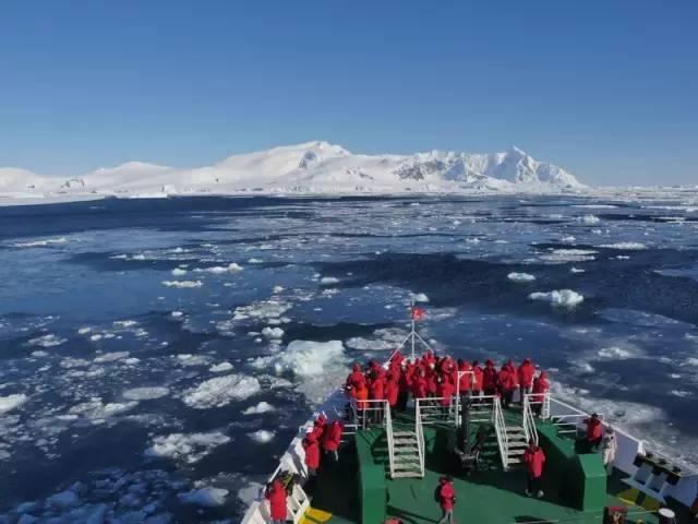4岁的辛巴也成为到达南极最小的中国人。