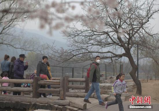 皇家北京赛车软件下载