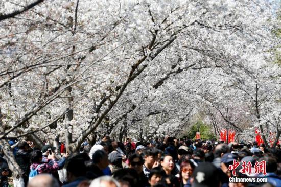 北京冷空气有所减弱 空气质量为良