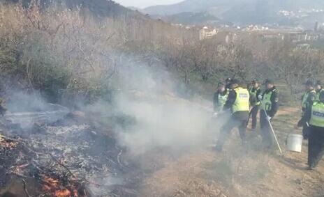 连云港通报小团山森林火灾事故 火灾过火面积230亩