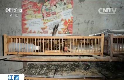 江西萍乡319国道上多车相撞 伤亡情况不明(图)