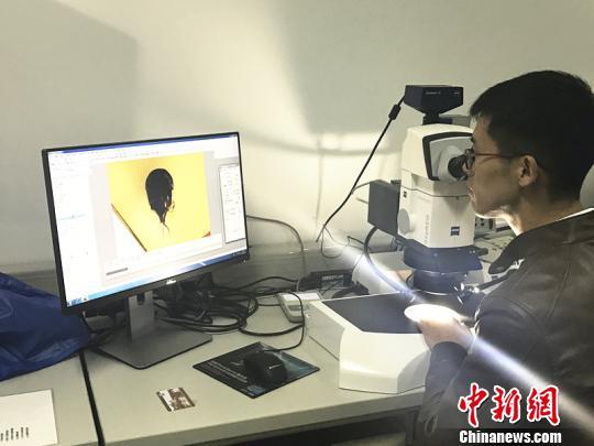 """图为蔡晨阳博士通过显微镜观察白垩纪琥珀内的""""白蚁城堡""""。 杨颜慈 摄"""