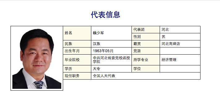 魏少军个人资料 图据 中国人大网
