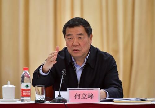 国家生长革新委主任何立峰出席集会并作讲话。