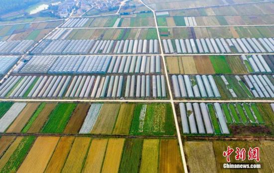 资料图:新型农业种植园。 赵春亮 摄