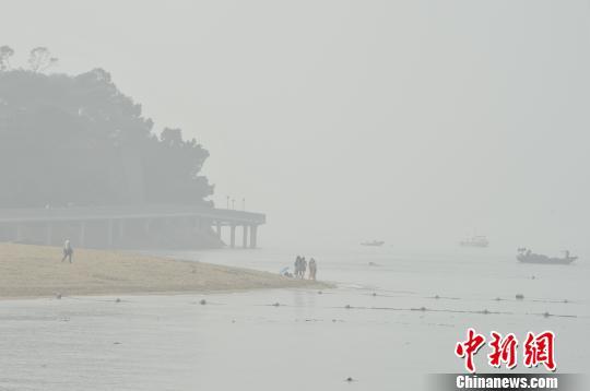 大雾锁鹭岛