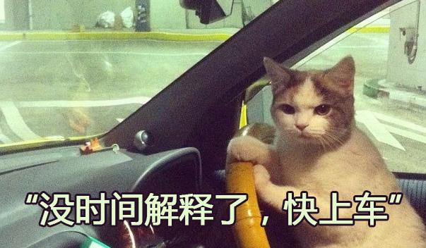 老司机开车,不仅浪还有如此奇效呐!
