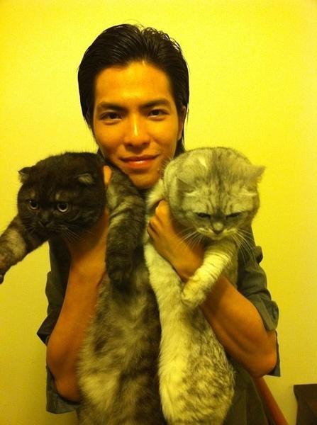 AB养猫都得要和自己长得像,陈乔恩的大嘴都要吃掉小猫头了!