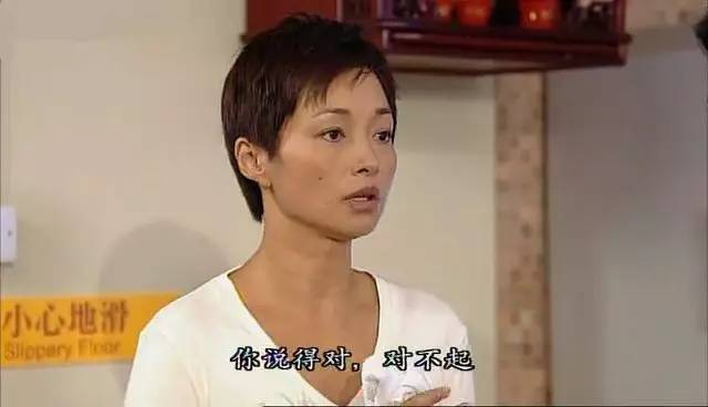 2008年,李绮红复出拍摄电视剧《绝代商娇》,饰演心直口快的佘慕莲.
