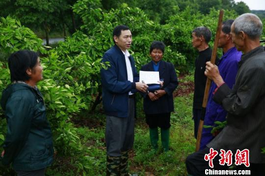 刘景贵(左二)在当阳市淯溪镇春新村搜集问题线索。 向晶方 摄