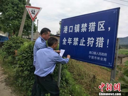 宁国市警方张贴公告 赵强 摄