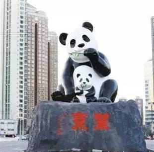 望京地标大熊猫