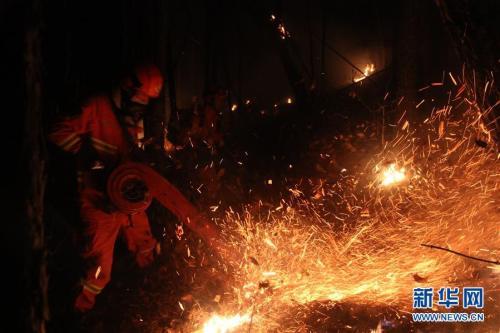 武警内蒙古大兴安岭森林支队官兵在灭火。新华社发 毛亚团 摄 图片来源:新华网
