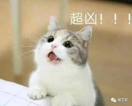 面对中国综艺抄袭成风…韩国终于爆发了?!