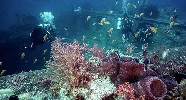 苏伊士湾海底二战英货船残骸仍保存完好