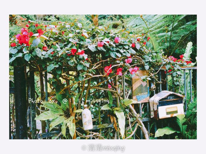 初夏の冲绳——玻璃教堂里的梦之婚礼