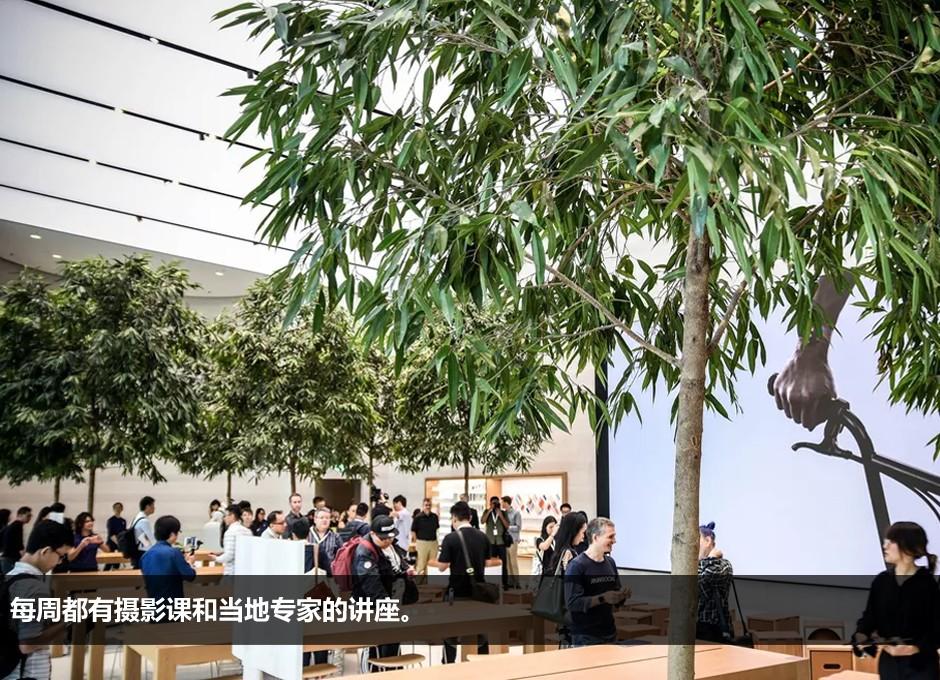 苹果电池香港闯祸:两名员工因吸入有害气体入院