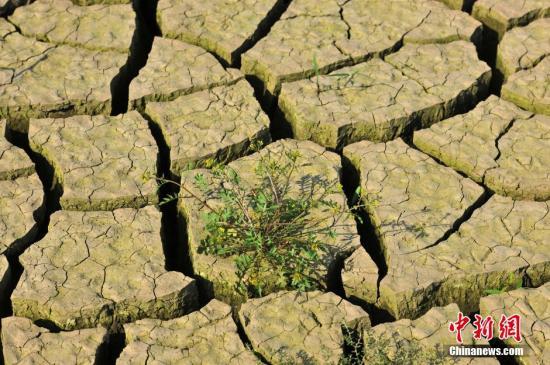 资料图: 图为干旱的土地 中新社发 张磊 摄 图片来源:CNSPHOTO
