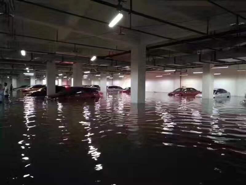 多图直击| 暴雨后合川变成了这样 消防已连夜救出149人