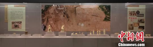 南京地下首度发现唐贞观年间官墓群,系江南地区罕见。 吴小宝 摄