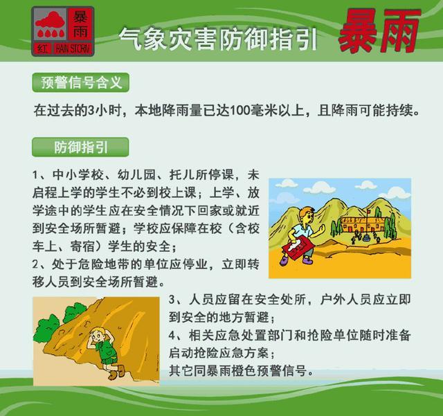 """台风""""苗柏""""登陆广东:手臂粗树木被连根拔起 钢架被吹弯"""