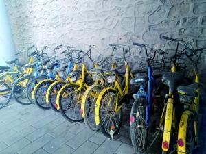 打捞上来的共享单车被放在一排。