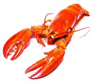 小龙虾横行:多方入局分割千亿市场 亟待规范化