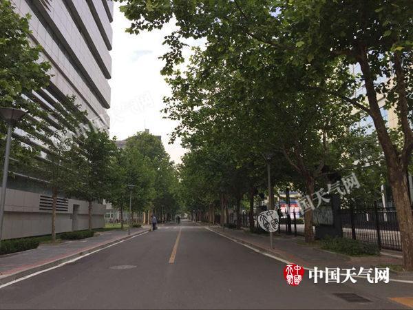周末北京暑热持续今日最高35℃阵雨大风扰出行