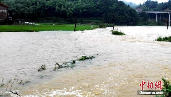 入汛以来,湖南多地先后降下暴雨。6月22日最先,湖南桃江县遭遇今年最强降雨,加之上游水库泄洪,资江桃江段水位连日来连续上涨,造成多地被洪水浸没。图为洪水淹没门路农田。 王鹏 摄
