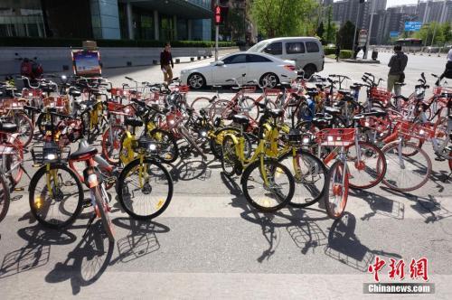 资料图:北京街头共享单车随处可见。中新社记者 侯宇 摄