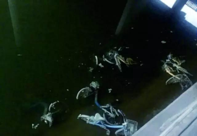 """(护城河中的单车""""尸体"""")"""
