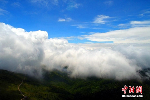 资料图:神农架现云海奇观。 周星亮 摄