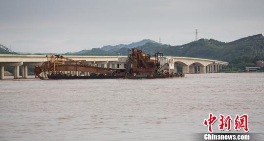 图为脱险挖沙船正被拖离桥底转移至保险地带。 陈选平 摄