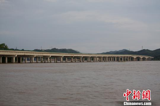 图为浔江特年夜桥,年夜桥全长1839米,桥面宽29.6米,北起梧州市长洲区龙华村,南至苍梧县龙圩镇。 陈选平 摄