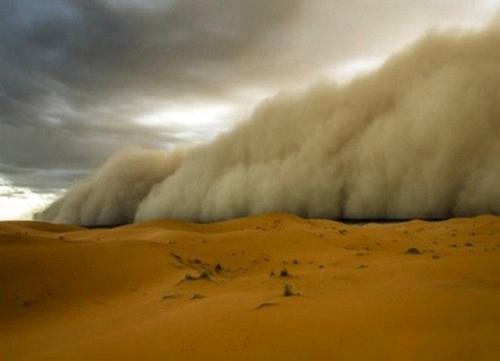 工学院力学与工程科学系陶建军课题组在沙尘暴研究上取得新进展