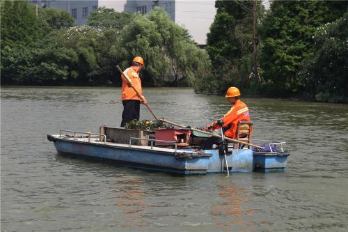 宁波内河面临浮萍滋生风险 城管全天候巡查